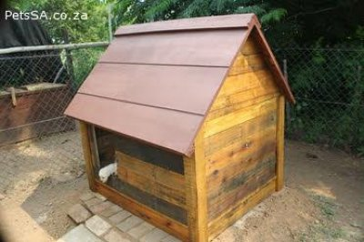 dog kennels and dog houses for sale